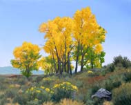 Cottonwoods Nevada: Jim Promessi