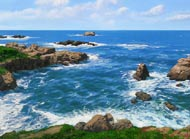 Point Lobos: Jim Promessi
