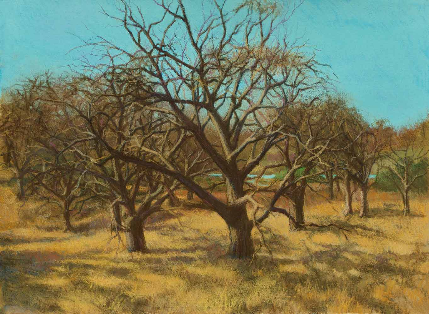 Bare Trees 22x30, pastel by Promessi